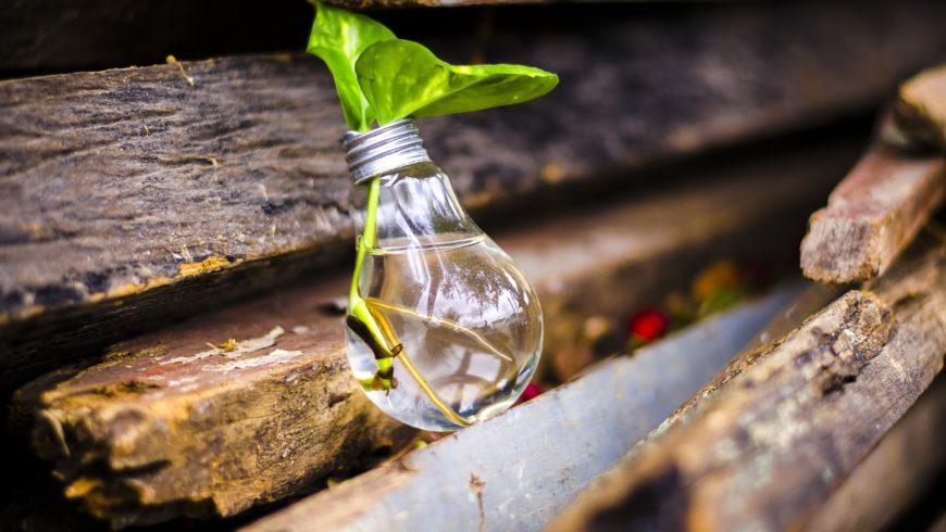 Curiosità sul riciclo dei rifiuti: 8 cose che non ti hanno mai detto
