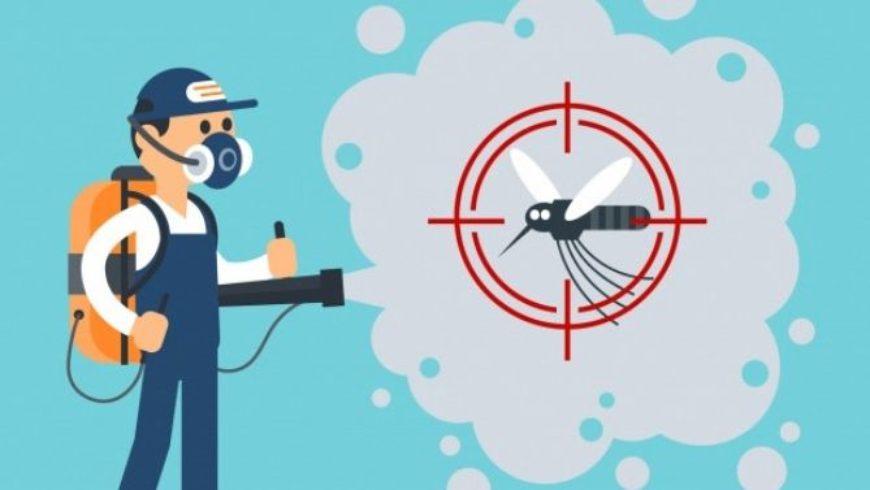 Disinfestazione zanzare: quando e come intervenire
