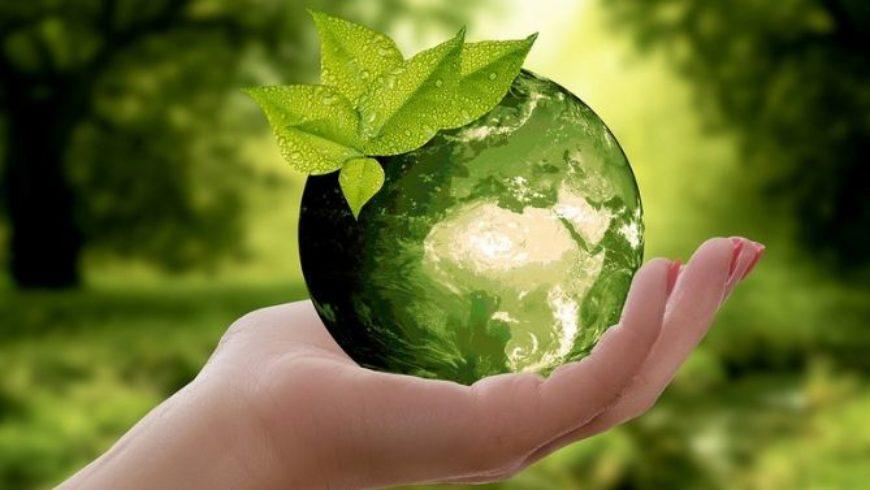 Etichette rifiuti, come proteggere l'ambiente e l'uomo